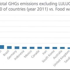 Food waste emissions