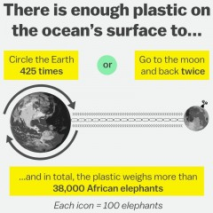 Plastic in the oceans